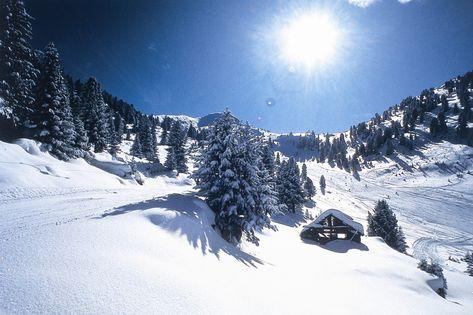 Tyrol du sud