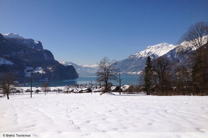 wintersport en aanbiedingen in Brienz