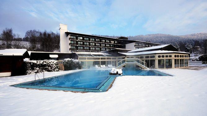 best western hotel sonnenhof in lam g nstige angebote bewertung. Black Bedroom Furniture Sets. Home Design Ideas