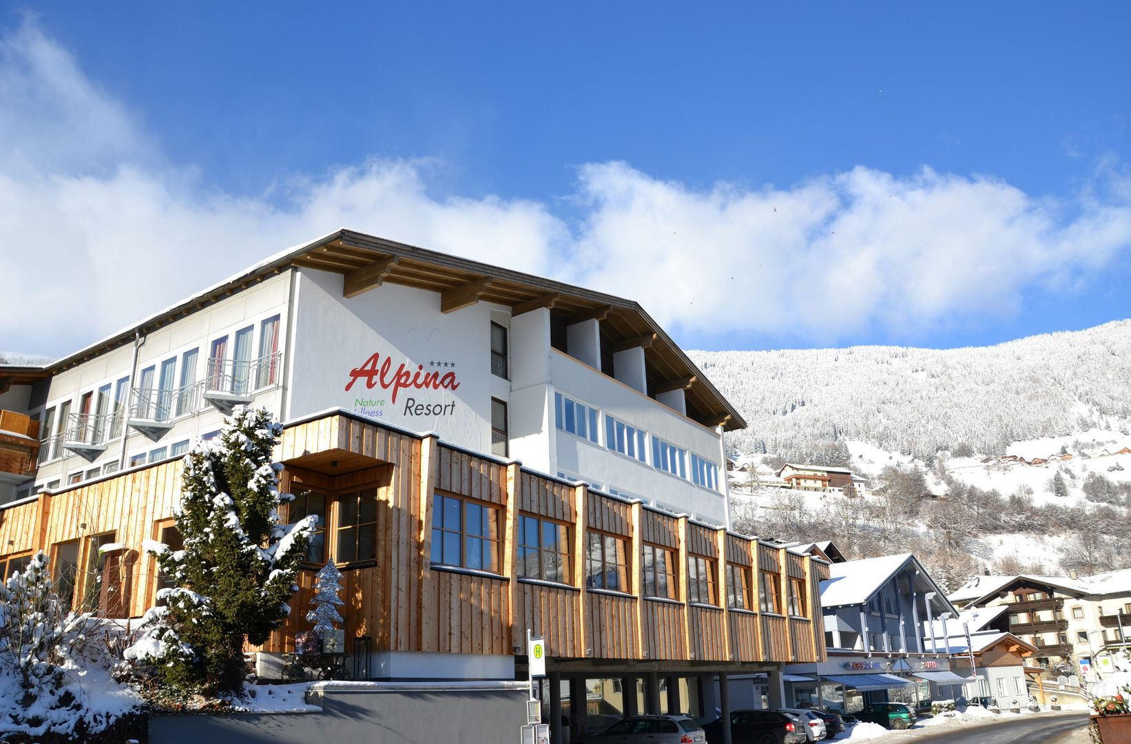 Hotel Alpina Resort