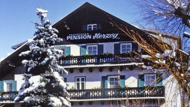 Pension Herzog