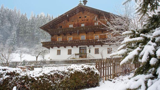 Bauernhof Appartement Treichlbauer