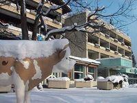 Unterkunft Hotel Stella, Interlaken,