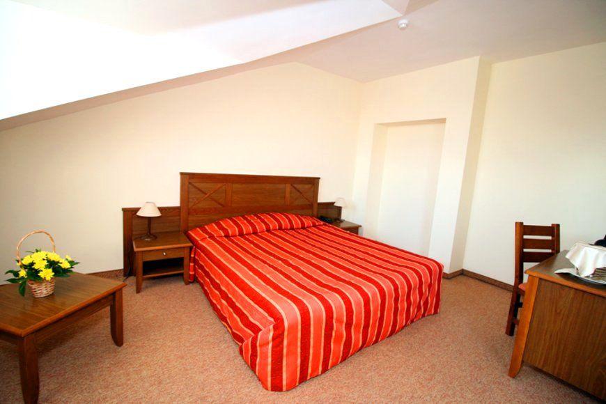 Evelina Palace Hotel - Apartment - Bansko